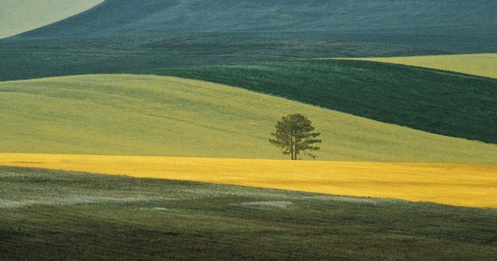 A hét fotósa - Franco Fontana